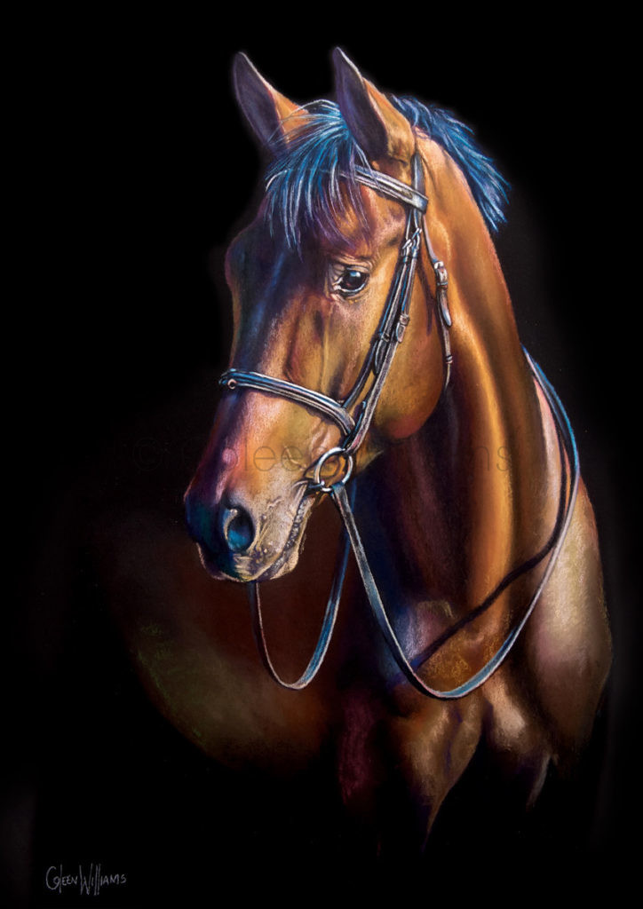 ColArt - Art by Coleen Williams - Boots - Horse