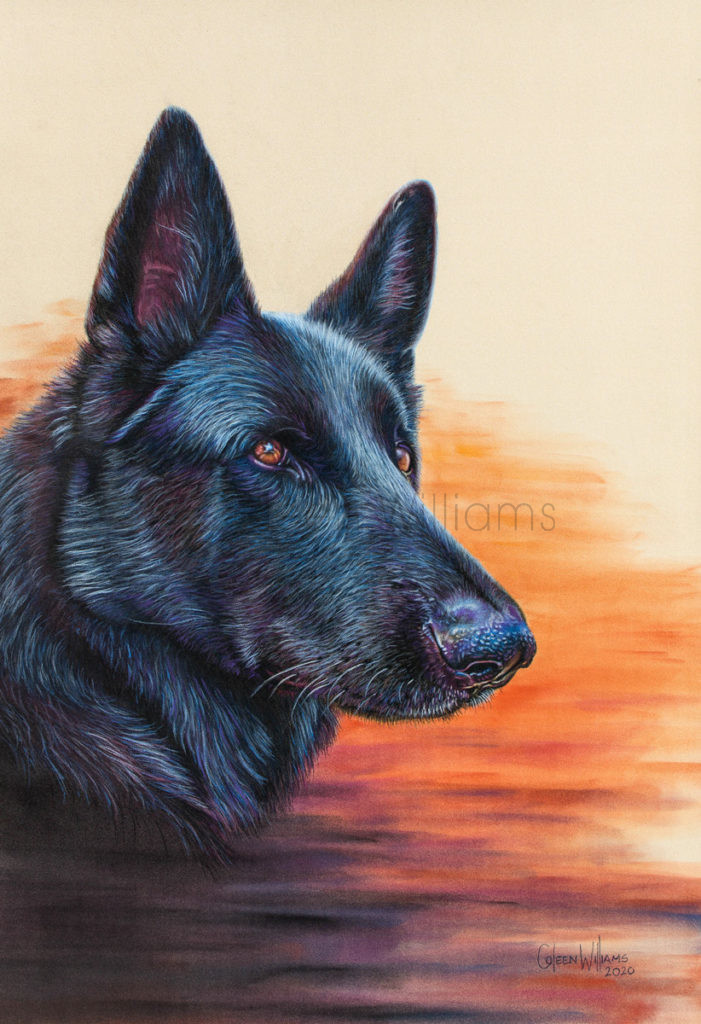 ColArt - Coal - Dog