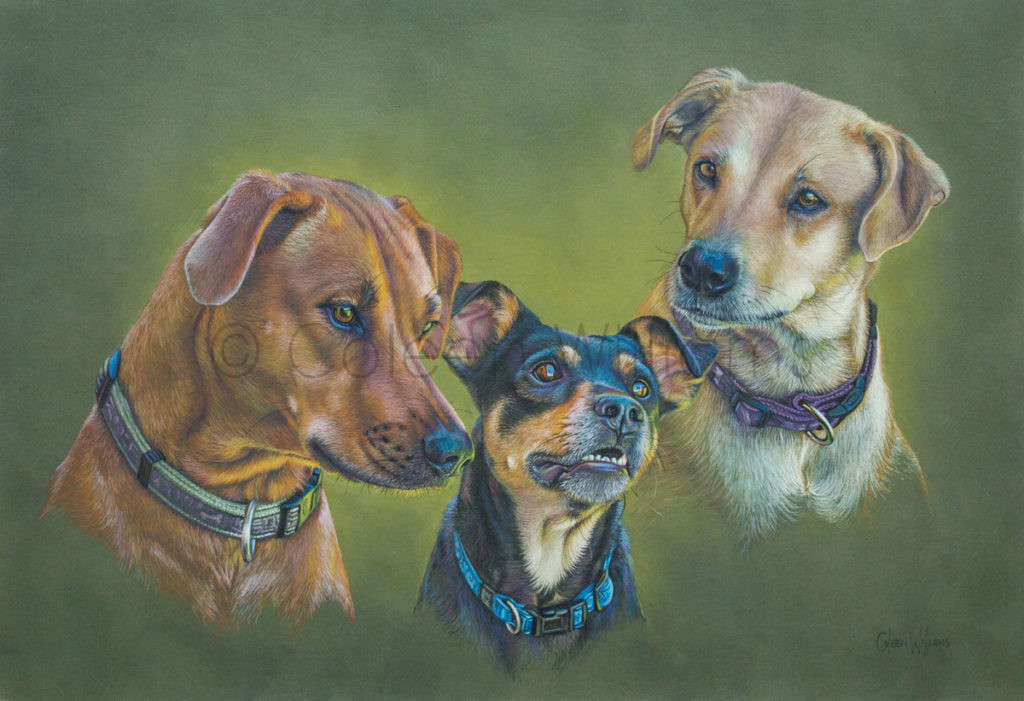 ColArt - EmmerickTrio - Dogs