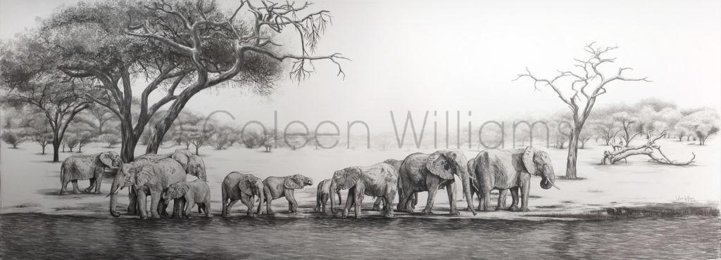 ColArt - Dwarfed by Giants - Elephants