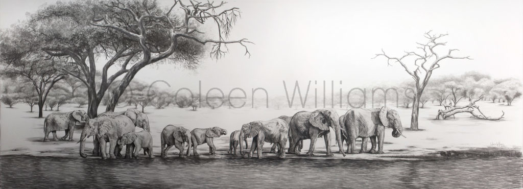 ColArt - Art by Coleen Williams - Dwarfed by Giants - Elephants