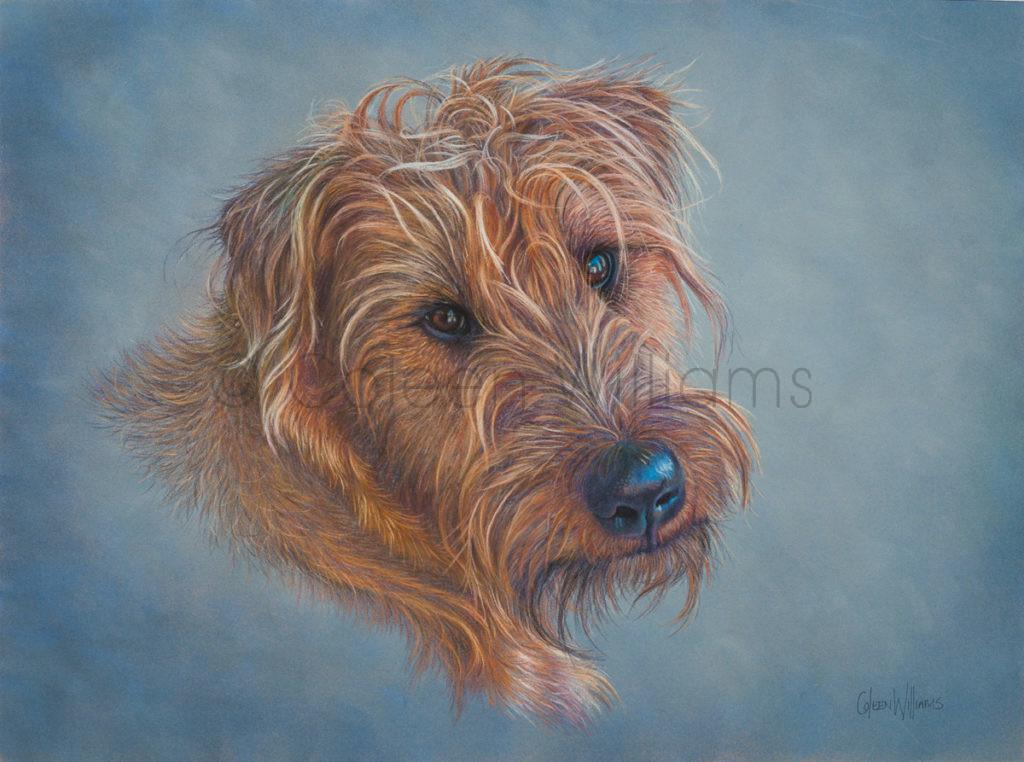 ColArt - Art by Coleen Williams - Flint - Dog