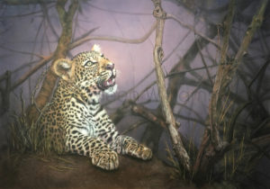 ColArt - Prince Charming - Leopard