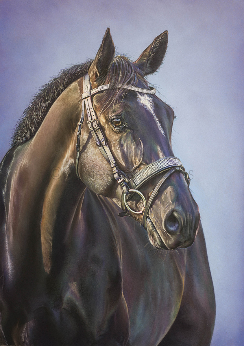 ColArt - Art by Coleen Williams - Satchmo - Horse