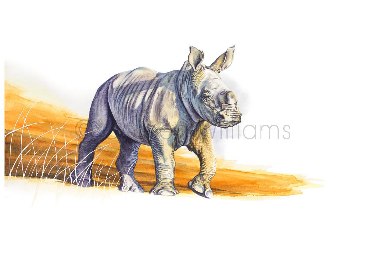 ColArt - Art by Coleen Williams - Africa's Babies - Rhino