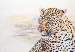 ColArt - Basile - Leopard