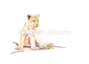 ColArt - Lion Cub