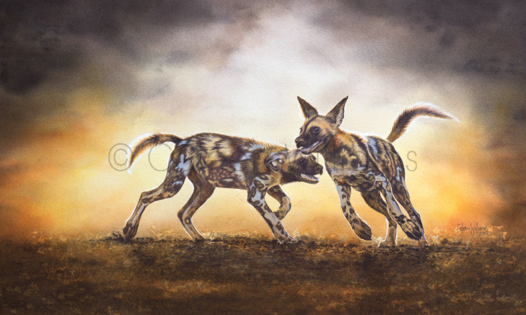 ColArt - Dawn Dust Dance - Wild Dog pups