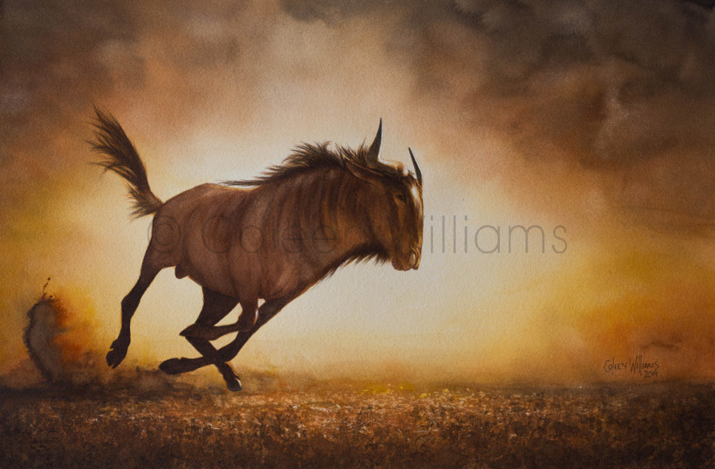 ColArt - From Dust til Dawn - Wildebeest
