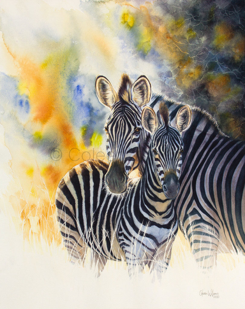 ColArt - Art by Coleen Williams - First Light - Zebras
