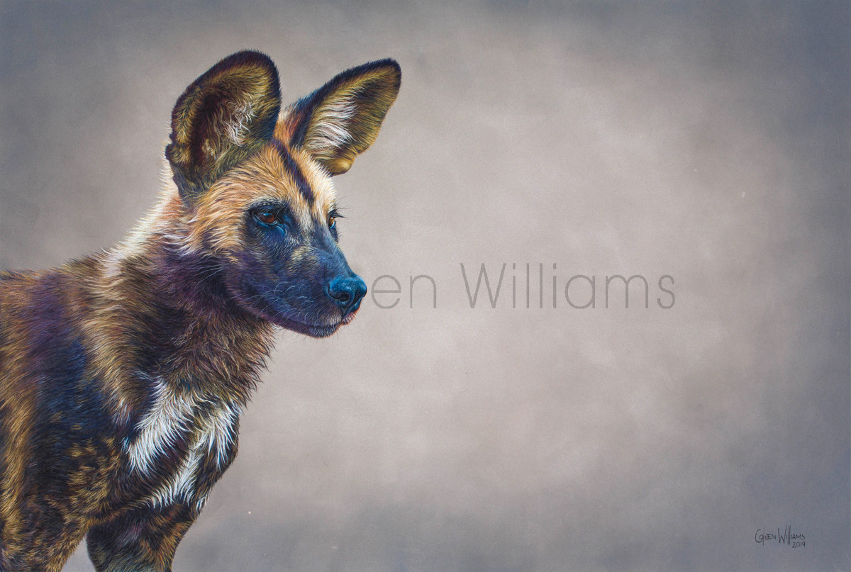 ColArt - Art by Coleen Williams - Wild Dog