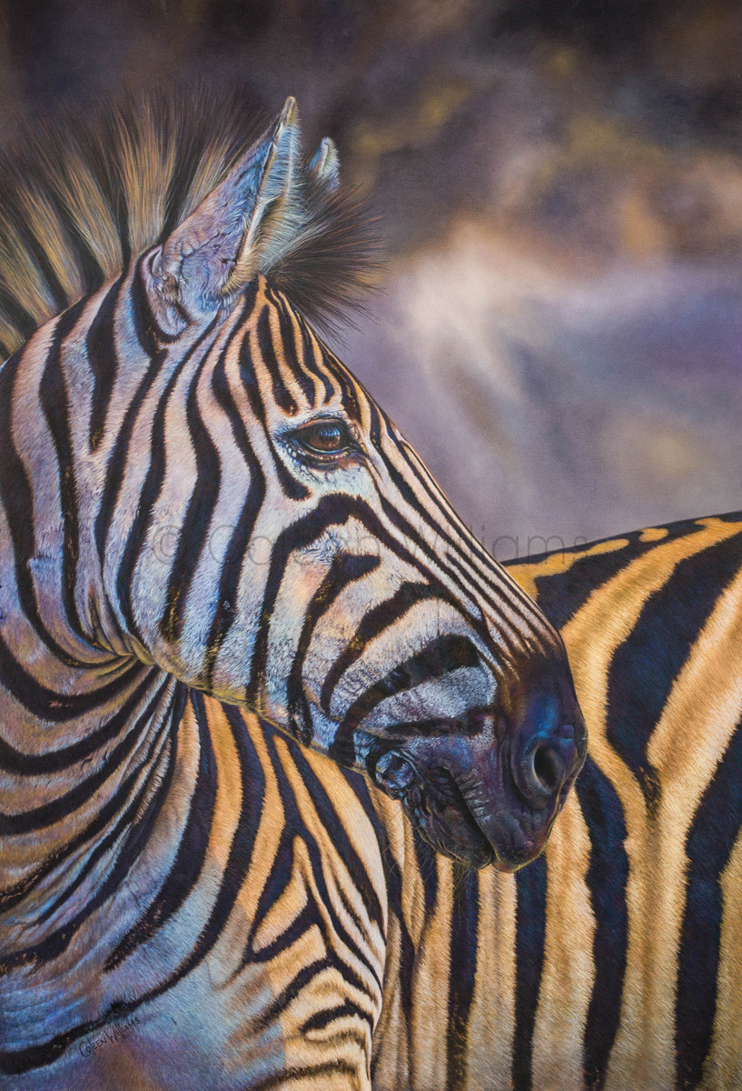 ColArt - Art by Coleen Williams - Weathered Stripes - Zebra