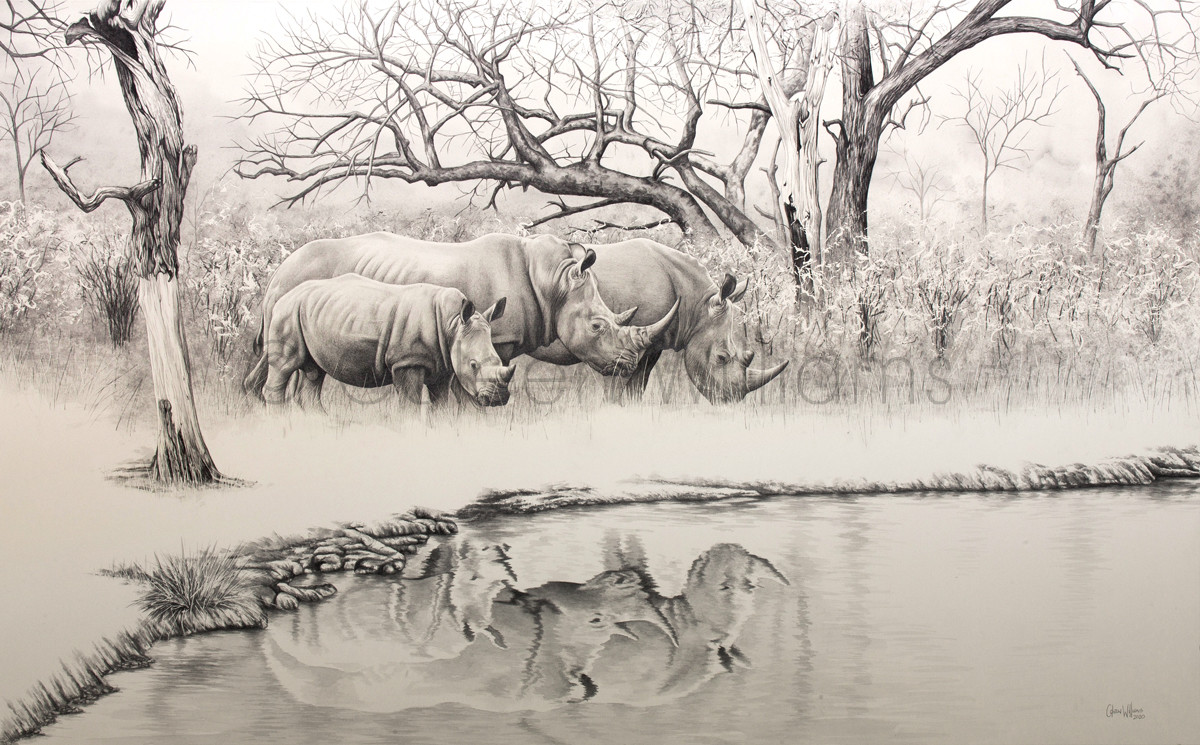 ColArt - Art by Coleen Williams - An African Family - Original watercolour and graphite artwork of a family of white rhinos.